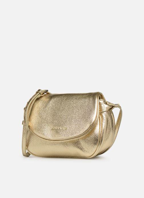 Bolsos de mano Sabrina Alice Oro y bronce vista del modelo