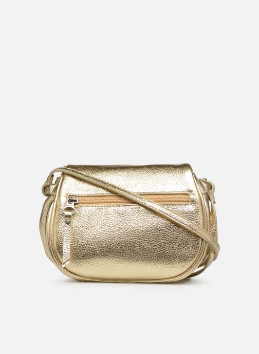 Bolsos de mano Sabrina Alice Oro y bronce vista de frente