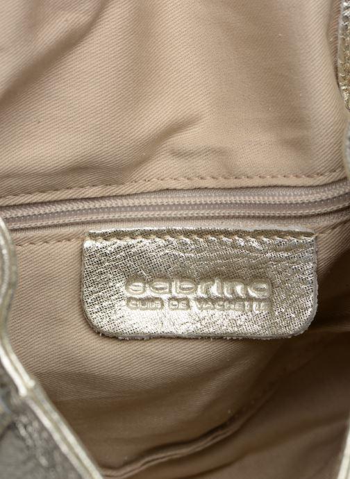 Handtaschen Sabrina Alice silber ansicht von hinten