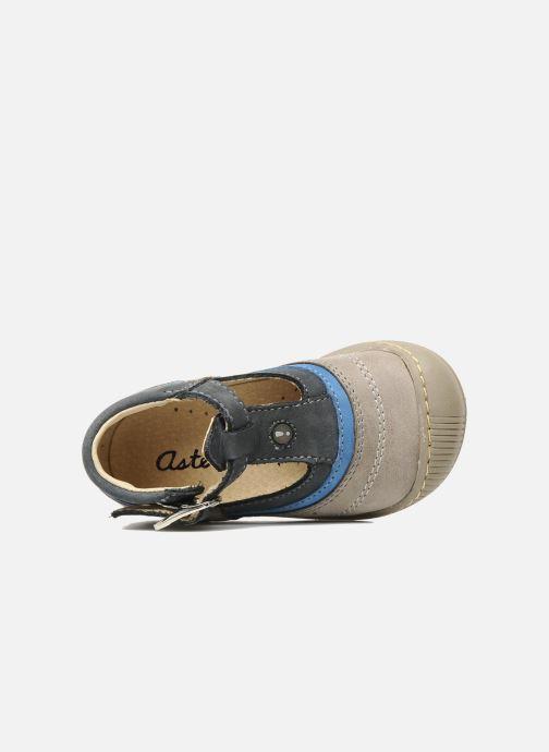 Stiefeletten & Boots Aster BOREAL grau ansicht von links