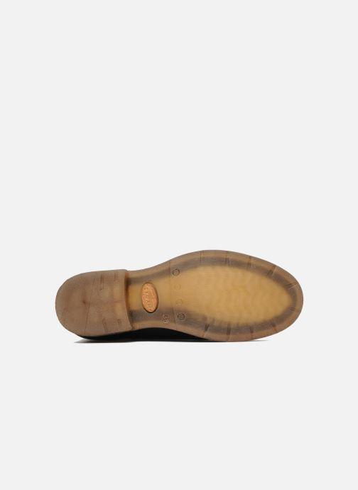Stiefeletten & Boots Koah Daryl schwarz ansicht von oben