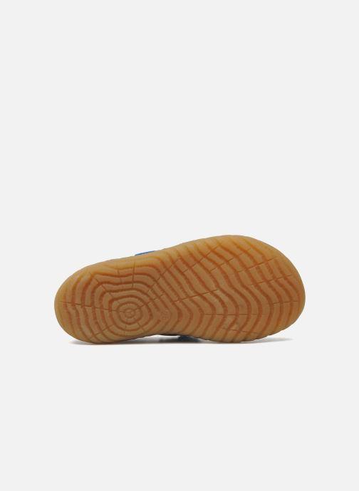 Baskets Pom d Api Woody Bi Velcro Bleu vue haut
