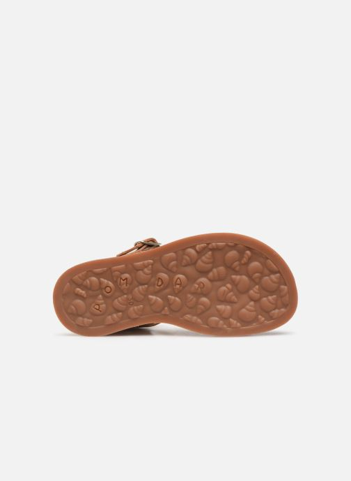 Sandals Pom d Api Plagette Buckle Tao Brown view from above
