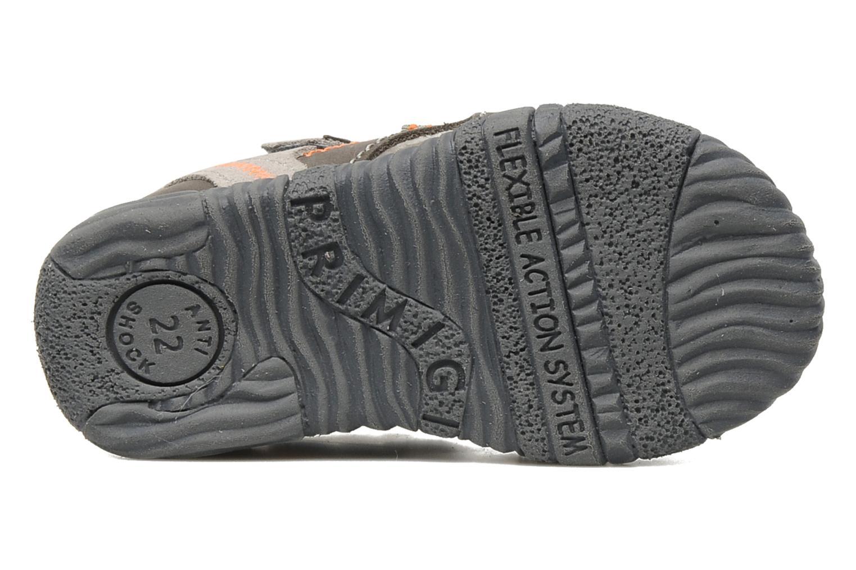 Sandals Primigi Cooper Grey view from above
