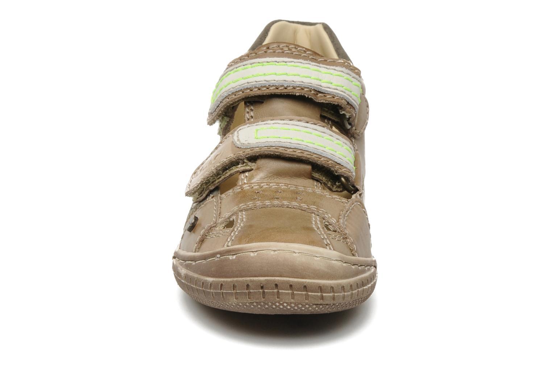 Chaussures à scratch Primigi Osbert-E Marron vue portées chaussures