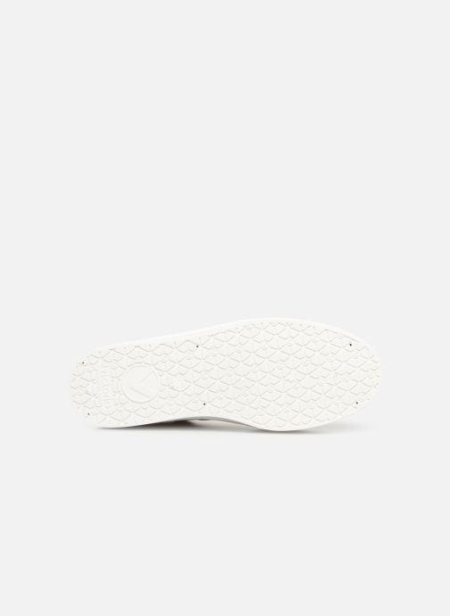Sneakers Victoria Blucher Lona Plataforma Beige immagine dall'alto