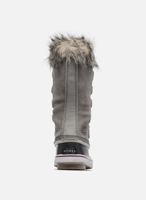 Chaussures de sport Sorel Joan Of Arctic Gris vue droite