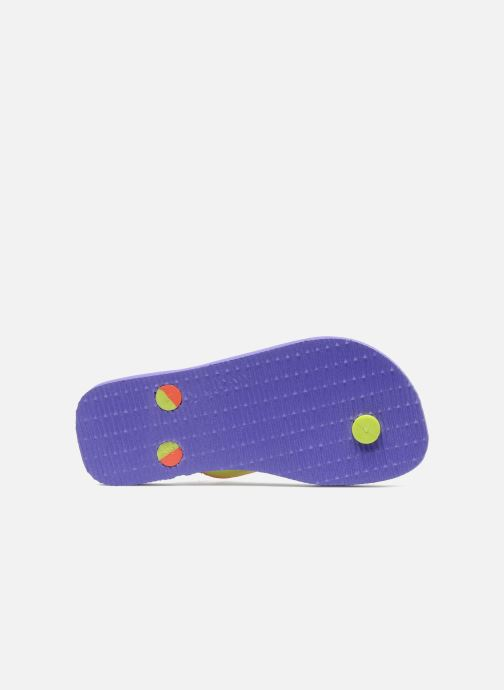 Flip flops Havaianas Top Mix Purple view from above