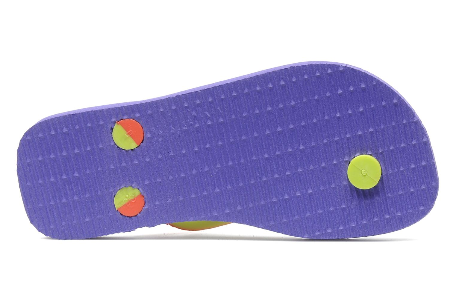 Chanclas Havaianas Top Mix Violeta      vista de arriba