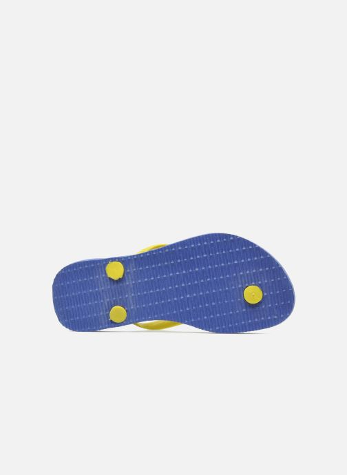 Flip flops Havaianas Kids Slim Pucca Blue view from above