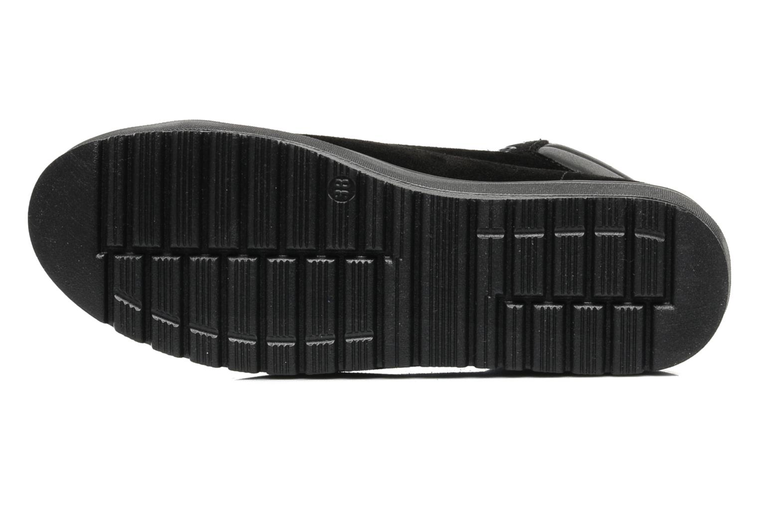 Trainers Pastelle Paty Black view from above