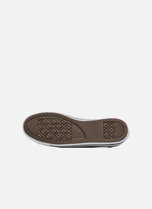 Sneaker Converse All Star Dainty Cuir Ox W schwarz ansicht von oben