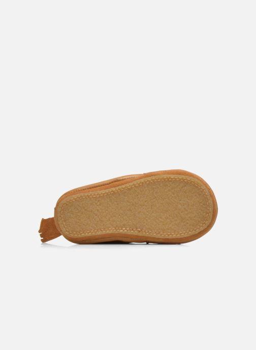 Pantoffels Easy Peasy Blublu Lion Beige 3/4'