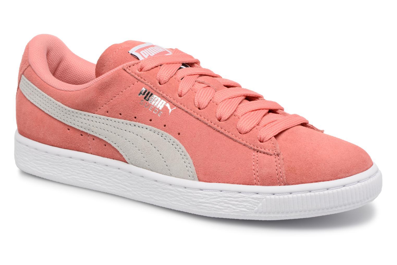 Shell Pink-Glacier Gray