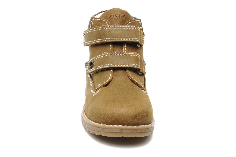 Ankle boots Primigi ASPY 1 Brown model view