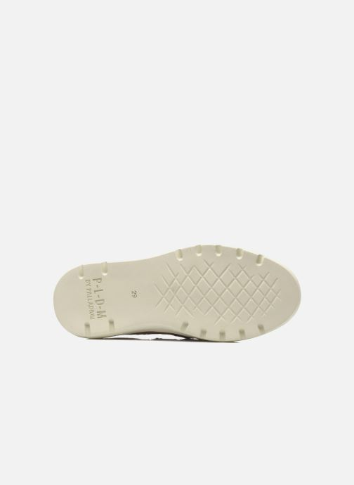 Sneakers P-L-D-M By Palladium FABIAN CVS Roze boven