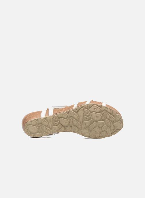 Sandales et nu-pieds Panama Jack Dori Blanc vue haut