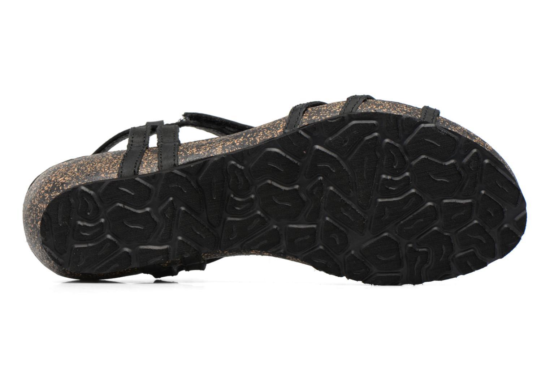 Sandals Panama Jack Dori Black view from above