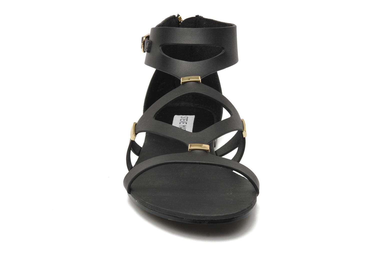 Sandales et nu-pieds Steve Madden COMMA Noir vue portées chaussures