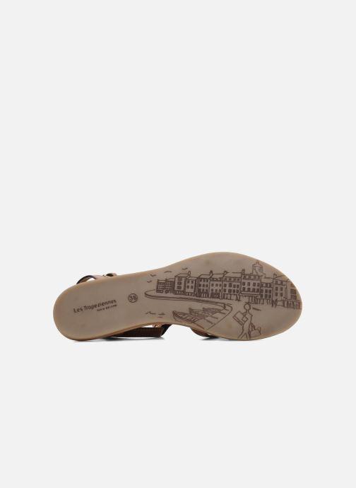 Sandalen Les Tropéziennes par M Belarbi Hams braun ansicht von oben