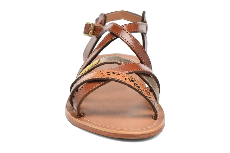 Sandals Les Tropéziennes par M Belarbi Hapax Brown model view