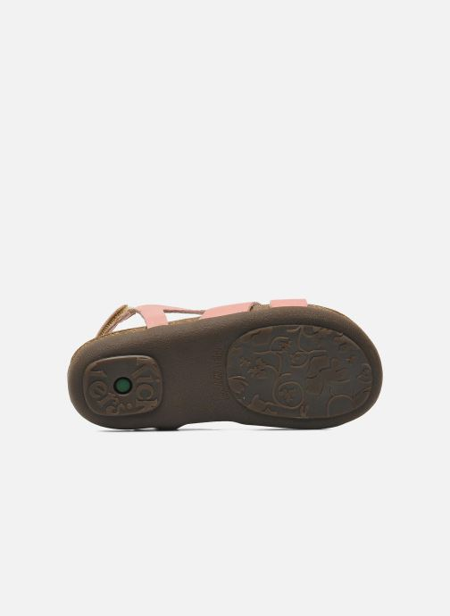 Sandalen Kickers Anatokid Roze boven