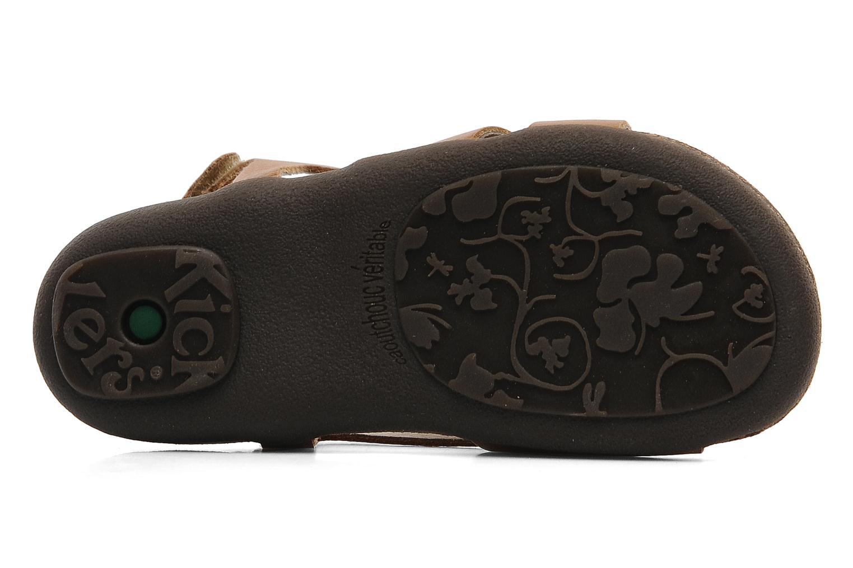 Sandali e scarpe aperte Kickers Anatokid Marrone immagine dall'alto