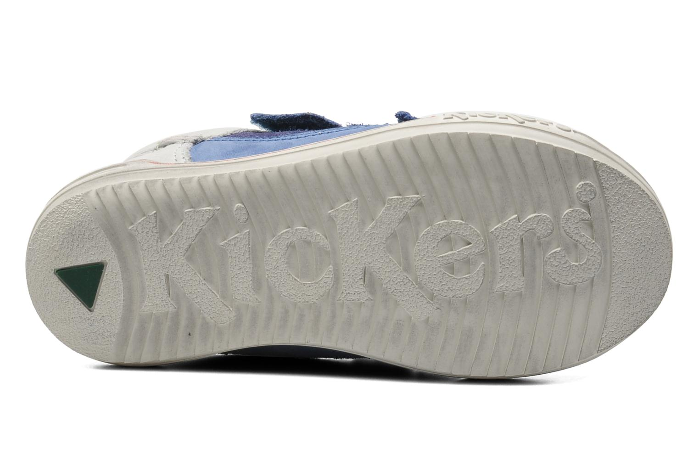 Baskets Kickers Jingembre Bleu vue haut