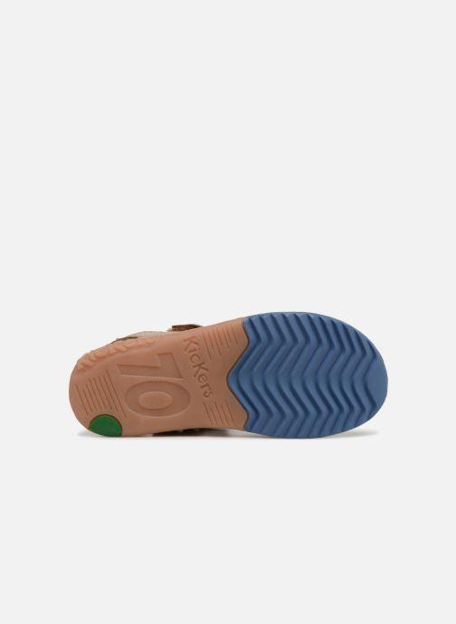 Sandalen Kickers Platino Bruin boven
