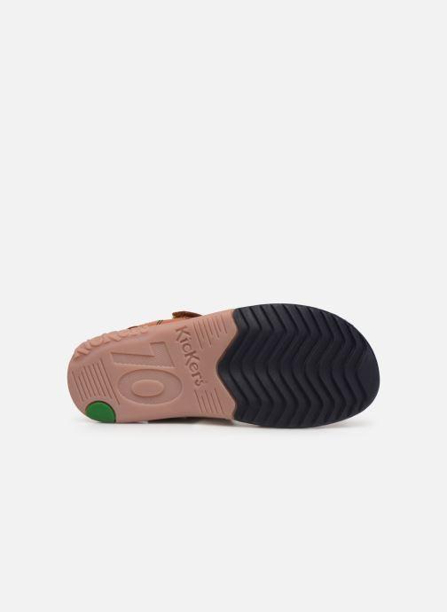 Sandales et nu-pieds Kickers Platino Marron vue haut
