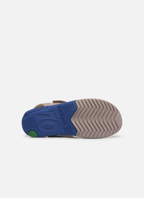 Sandalen Kickers Platino grau ansicht von oben