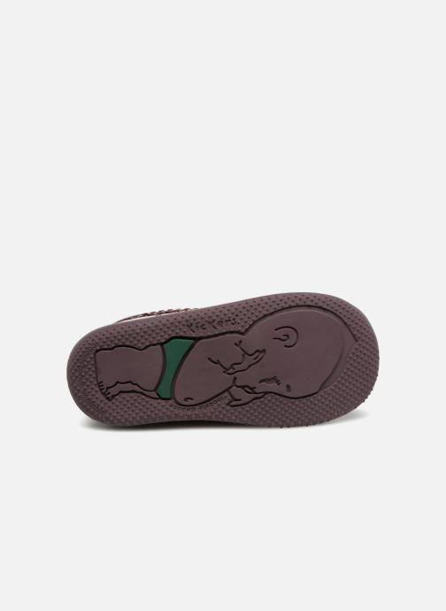 Boots en enkellaarsjes Kickers Billista Bordeaux boven