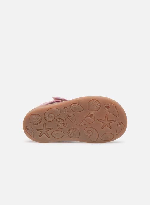 Sandales et nu-pieds Pom d Api POPPY STRAP Rose vue haut