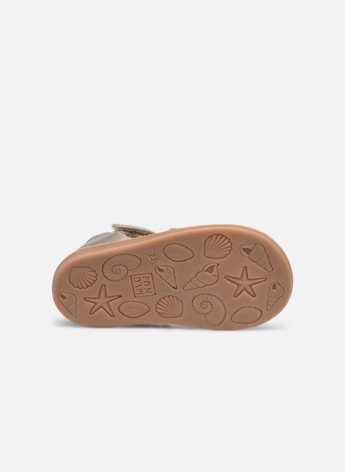 Sandali e scarpe aperte Pom d Api POPPY STRAP Oro e bronzo immagine dall'alto