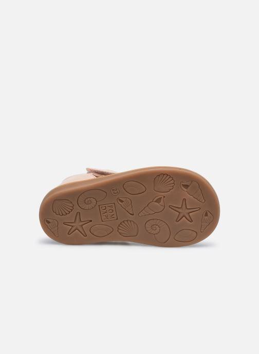 Sandali e scarpe aperte Pom d Api POPPY STRAP Rosa immagine dall'alto
