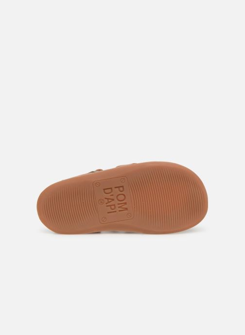 Sandales et nu-pieds Pom d Api Yapo Papy Buckle Marron vue haut