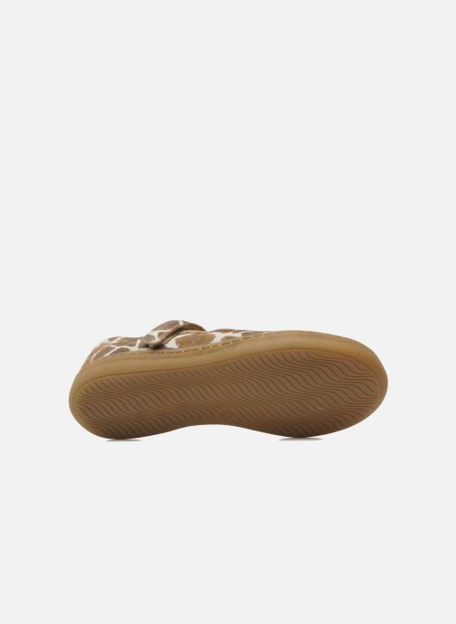 Ballerines Pom d Api NEW SCHOOL BABY Marron vue haut