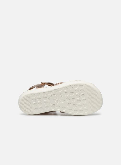 Sandales et nu-pieds Shoo Pom Goa Spart Rose vue haut