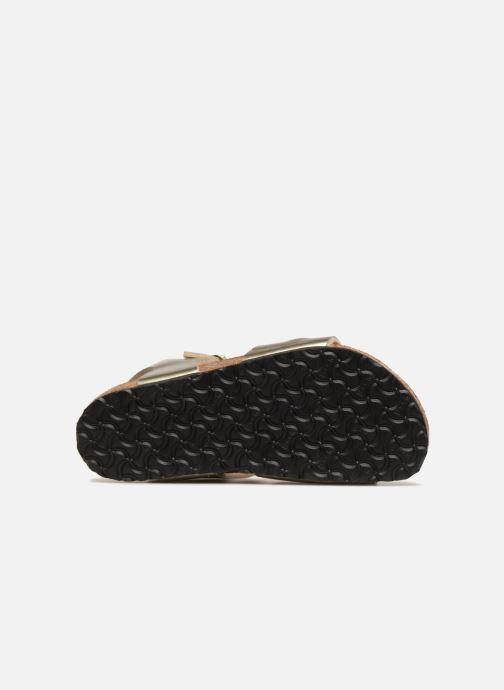 Sandali e scarpe aperte Birkenstock Rio Plain Birko Flor Oro e bronzo immagine dall'alto