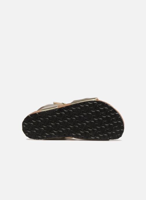 Sandales et nu-pieds Birkenstock Rio Plain Birko Flor Or et bronze vue haut