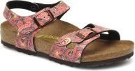 Paisley Fuchsia Brown