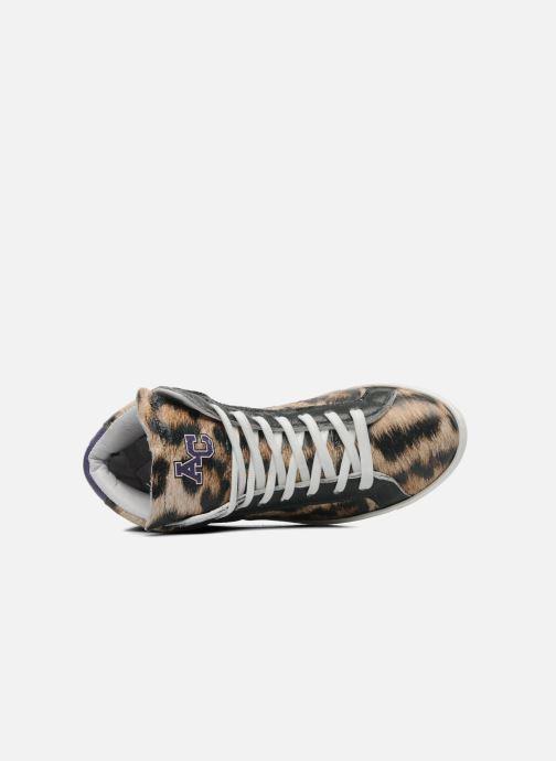 College Baskets Leopard Animal American W 2IH9EDW