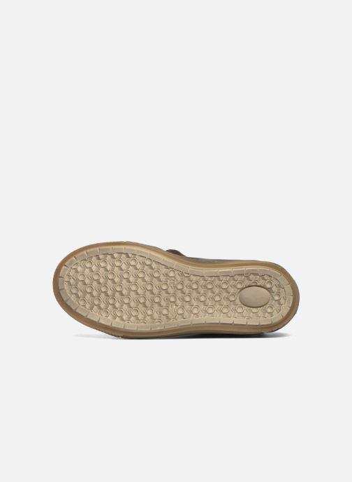 Sneaker Bisgaard Geo braun ansicht von oben