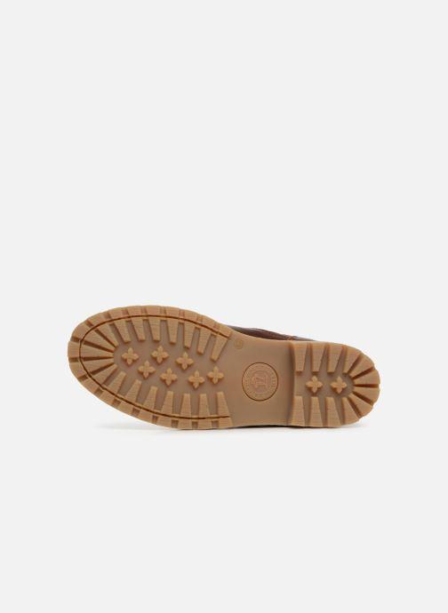 Boots en enkellaarsjes Panama Jack Faust Igloo Bruin boven