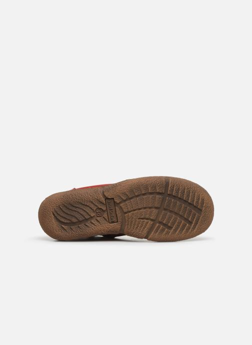 Lace-up shoes Josef Seibel Neele 01 Brown view from above