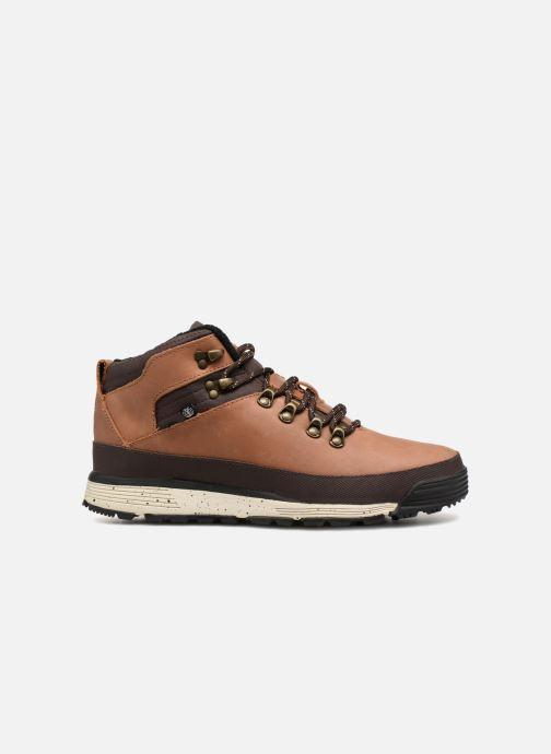 Chaussures à lacets Element Donnelly Marron vue derrière