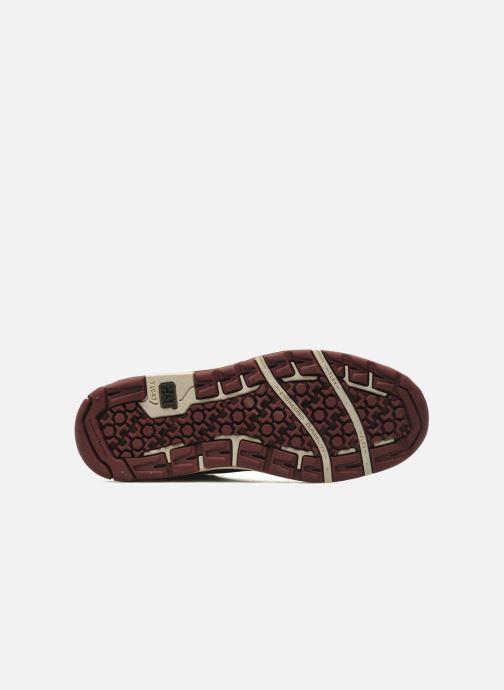 Sneaker Caterpillar Colfax Mid braun ansicht von oben