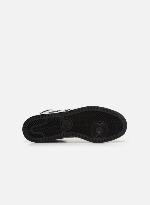 Sneakers adidas originals Top Ten Hi Zwart boven