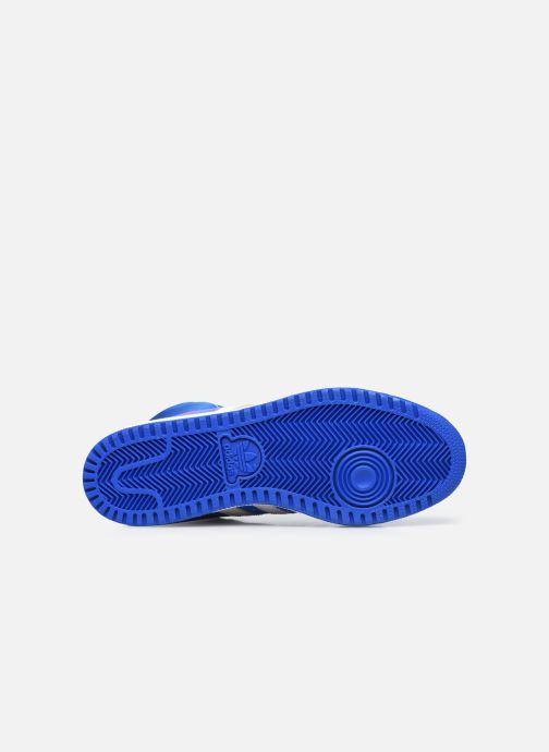 Baskets adidas originals Top Ten Hi Bleu vue haut