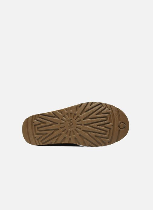 Zapatos con cordones UGG Neumel Marrón vista de arriba